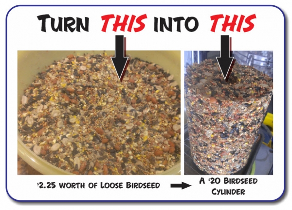 Make Your Own Birdseed Block at Home!